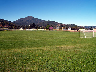 Redwood Ghilotti grass field