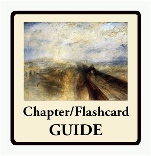 Chapter Flashcard Guides