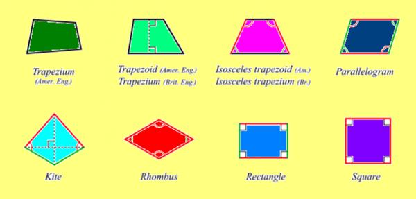quadrilateral 8