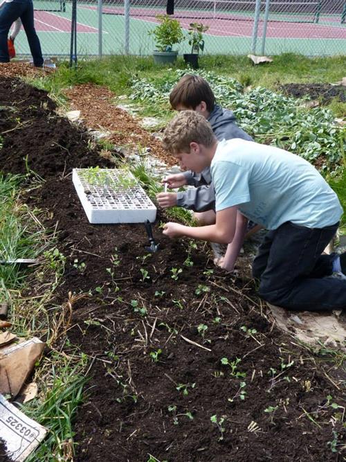 SustAg Farm Work 2014